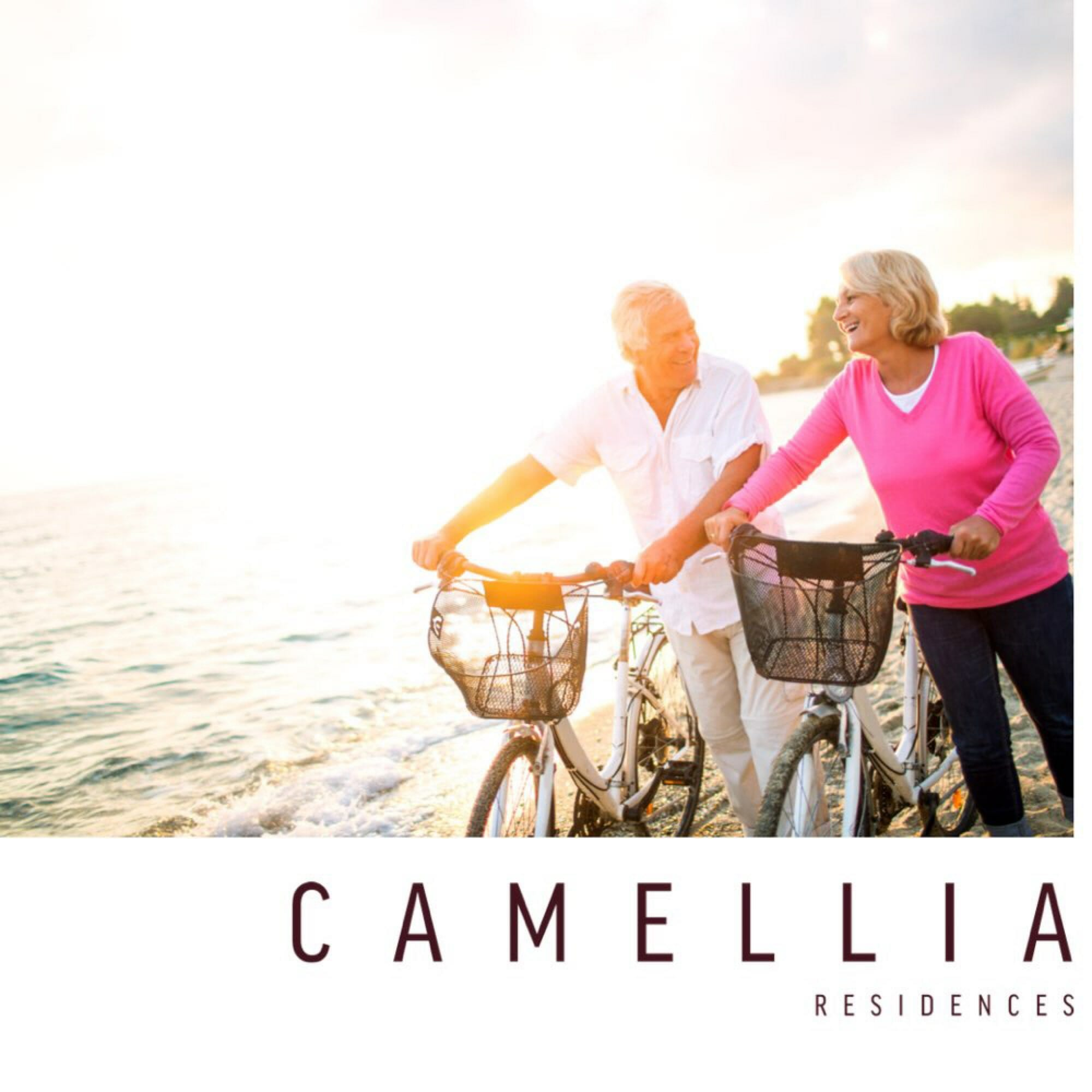 Seniors by the Beach News and Updates